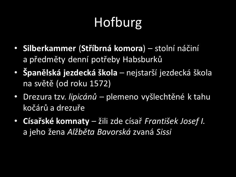 Hofburg • Silberkammer (Stříbrná komora) – stolní náčiní a předměty denní potřeby Habsburků • Španělská jezdecká škola – nejstarší jezdecká škola na s