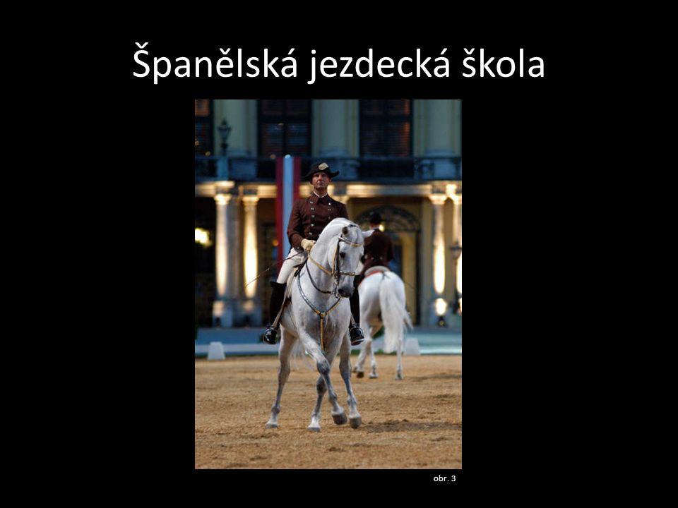 Španělská jezdecká škola obr. 3