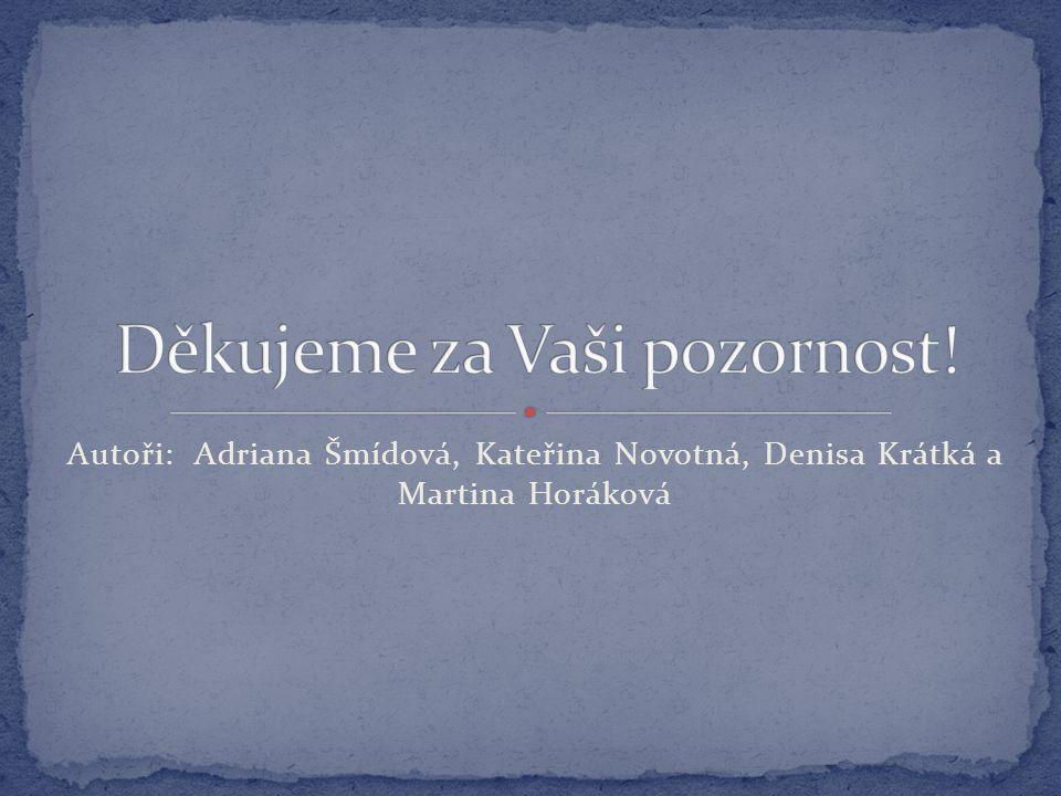 Autoři: Adriana Šmídová, Kateřina Novotná, Denisa Krátká a Martina Horáková