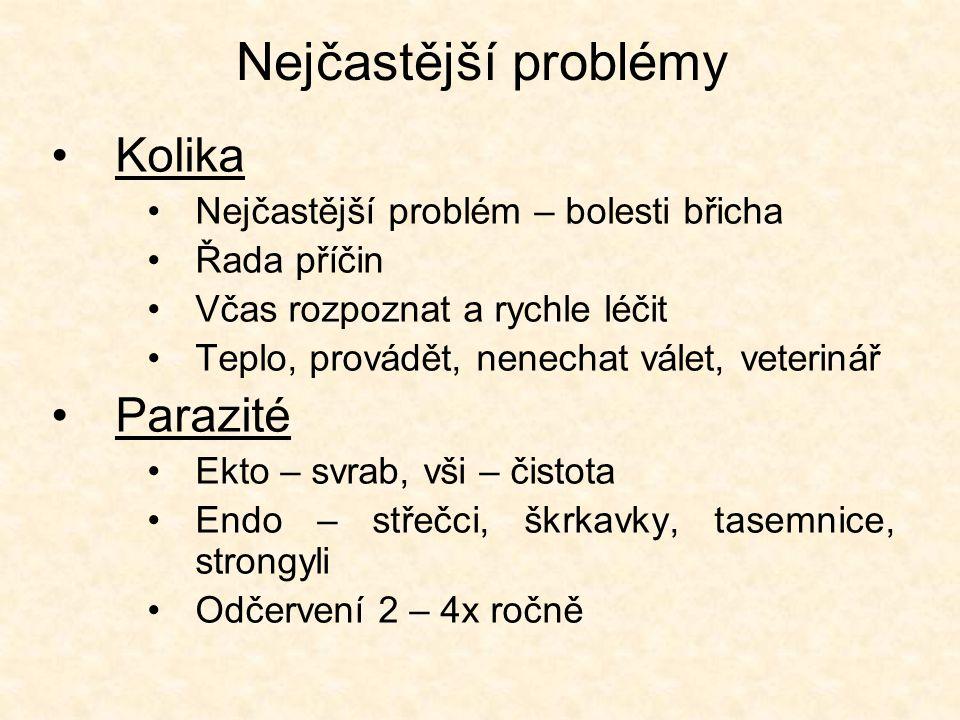 Nejčastější problémy •Kolika •Nejčastější problém – bolesti břicha •Řada příčin •Včas rozpoznat a rychle léčit •Teplo, provádět, nenechat válet, veterinář •Parazité •Ekto – svrab, vši – čistota •Endo – střečci, škrkavky, tasemnice, strongyli •Odčervení 2 – 4x ročně