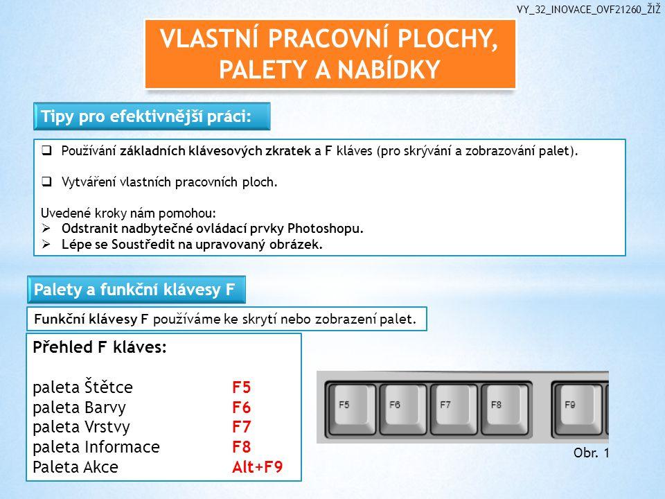 VLASTNÍ PRACOVNÍ PLOCHY, PALETY A NABÍDKY VY_32_INOVACE_OVF21260_ŽIŽ  Používání základních klávesových zkratek a F kláves (pro skrývání a zobrazování palet).