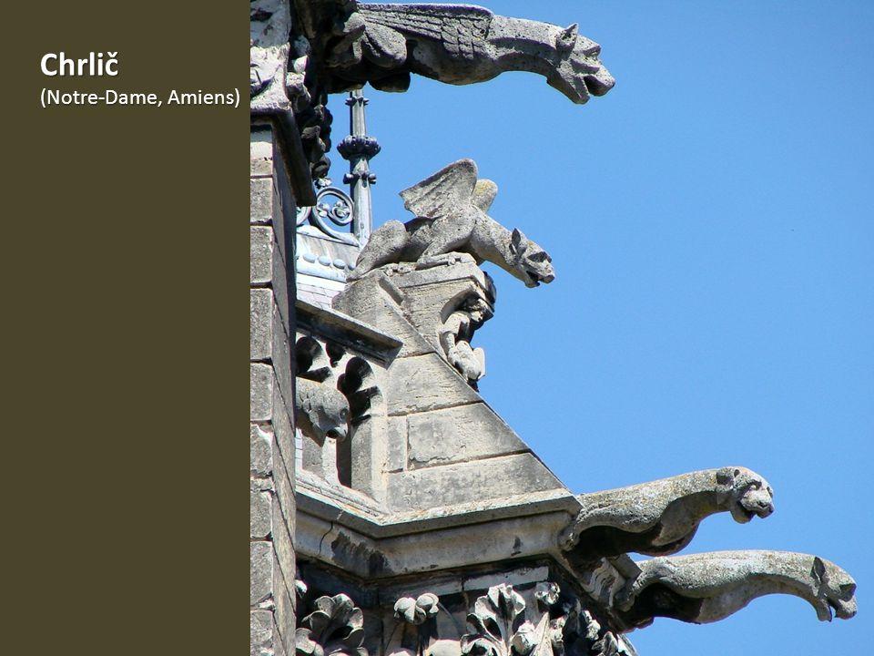 Chrlič (Notre-Dame, Amiens)