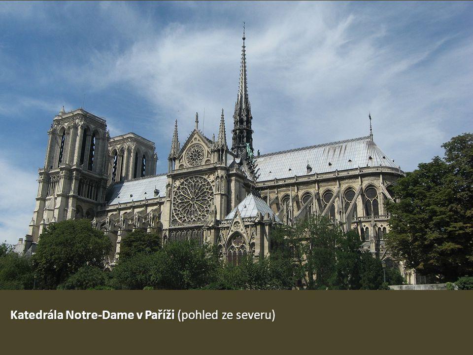 Katedrála Notre-Dame v Paříži (pohled ze severu)