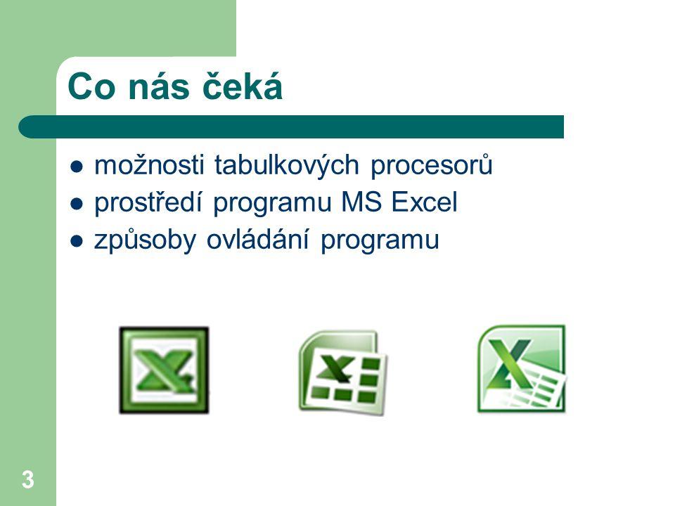 3 Co nás čeká  možnosti tabulkových procesorů  prostředí programu MS Excel  způsoby ovládání programu