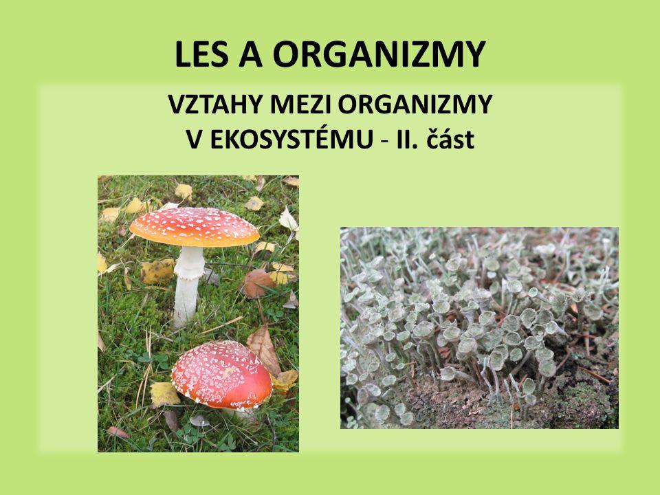 LES A ORGANIZMY VZTAHY MEZI ORGANIZMY V EKOSYSTÉMU - II. část