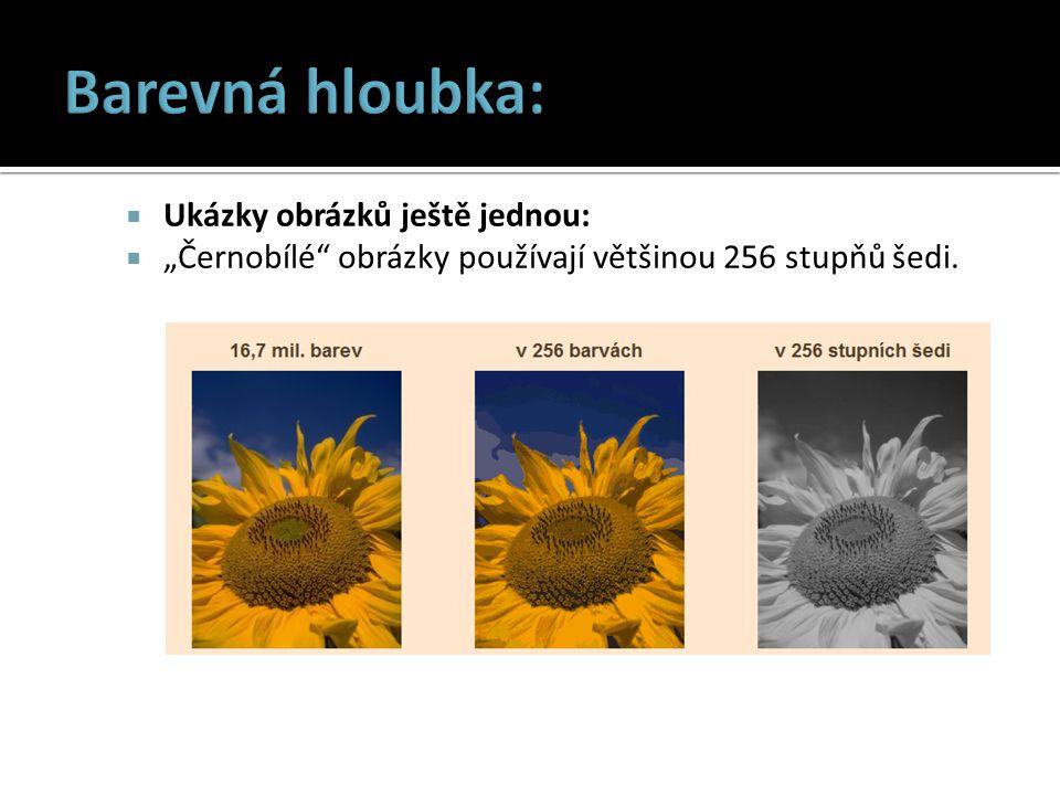 """ Ukázky obrázků ještě jednou:  """"Černobílé obrázky používají většinou 256 stupňů šedi."""