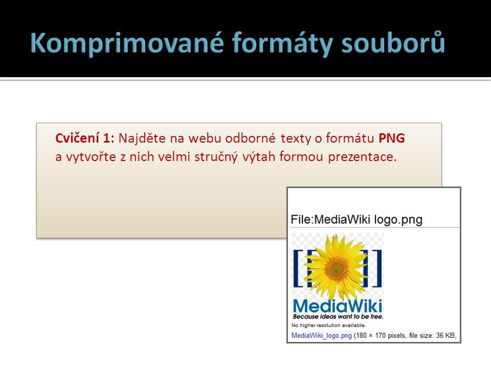Cvičení 1: Najděte na webu odborné texty o formátu PNG a vytvořte z nich velmi stručný výtah formou prezentace.