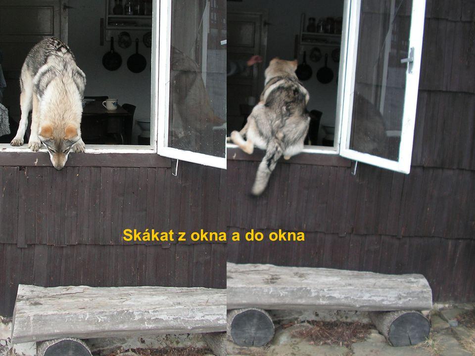 Skákat z okna a do okna