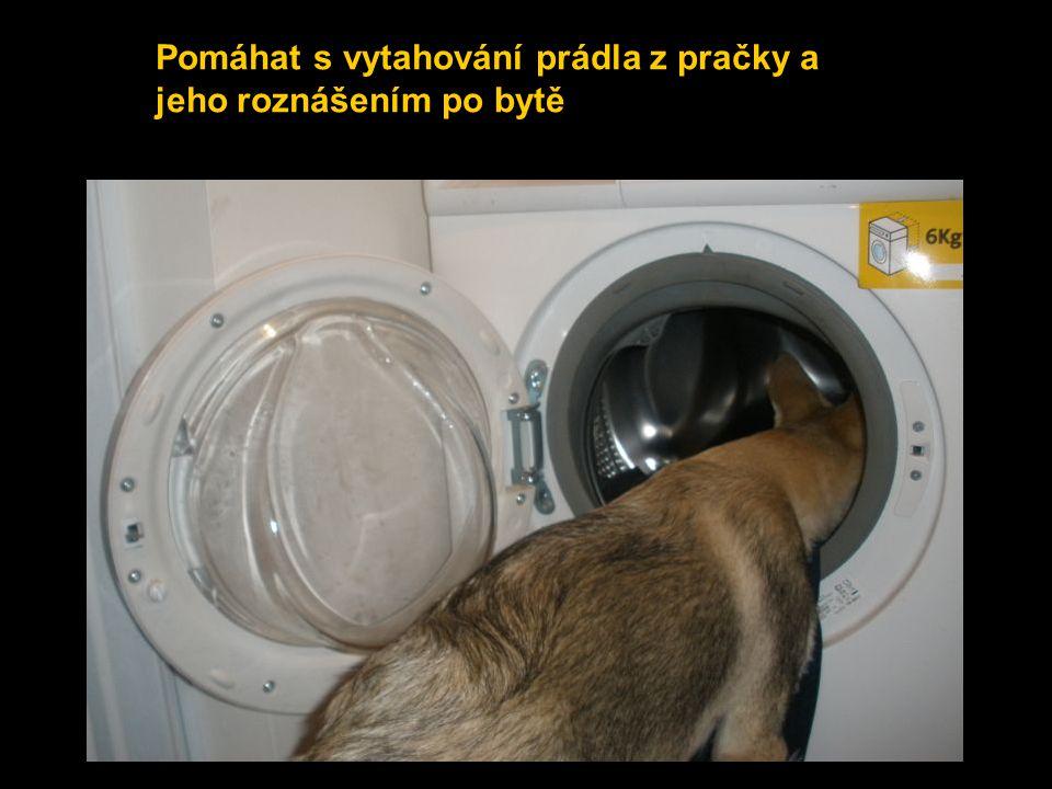 Pomáhat s vytahování prádla z pračky a jeho roznášením po bytě