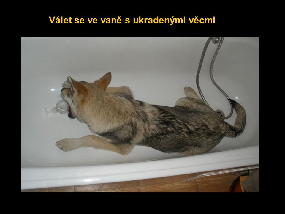 Válet se ve vaně s ukradenými věcmi
