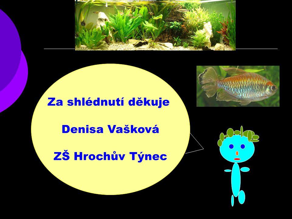 Za shlédnutí děkuje Denisa Vašková ZŠ Hrochův Týnec