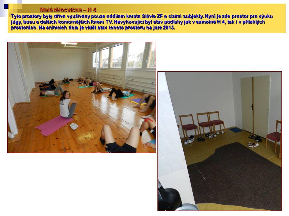 Malá tělocvična – H 4 Tyto prostory byly dříve využívány pouze oddílem karate Slávie ZF a cizími subjekty. Nyní je zde prostor pro výuku jógy, bosu a