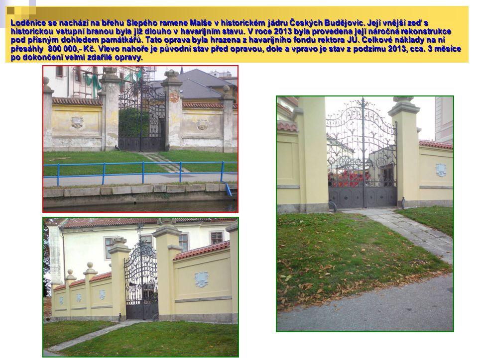 Loděnice se nachází na břehu Slepého ramene Malše v historickém jádru Českých Budějovic. Její vnější zeď s historickou vstupní branou byla již dlouho