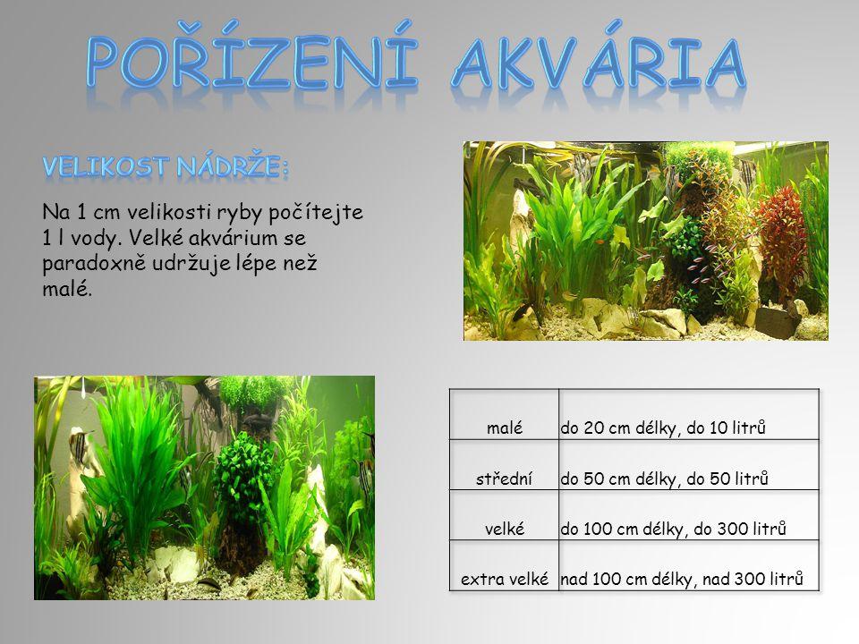 Na 1 cm velikosti ryby počítejte 1 l vody. Velké akvárium se paradoxně udržuje lépe než malé.