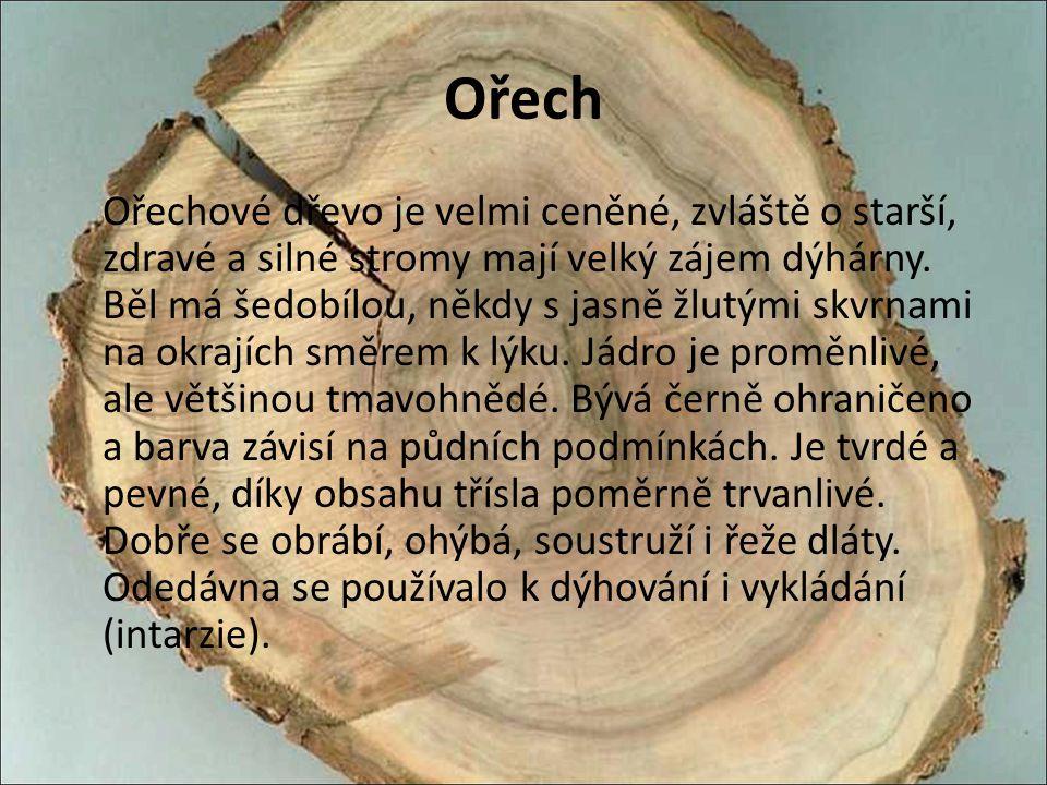 Ořech Ořechové dřevo je velmi ceněné, zvláště o starší, zdravé a silné stromy mají velký zájem dýhárny. Běl má šedobílou, někdy s jasně žlutými skvrna