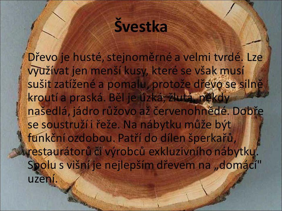 Švestka Dřevo je husté, stejnoměrné a velmi tvrdé. Lze využívat jen menší kusy, které se však musí sušit zatížené a pomalu, protože dřevo se silně kro