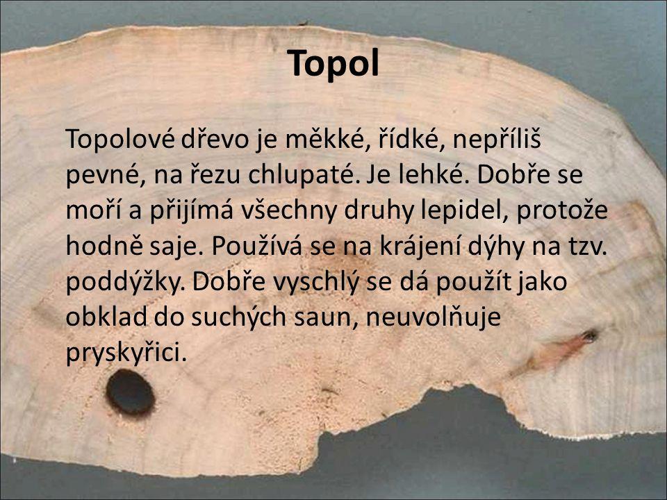 Topol Topolové dřevo je měkké, řídké, nepříliš pevné, na řezu chlupaté. Je lehké. Dobře se moří a přijímá všechny druhy lepidel, protože hodně saje. P