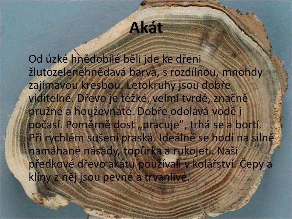 Borovice Dřevo borovice je měkké, křehčí než smrkové, bělová část je smetanově bílá až k okru, jádro oranžově hnědé až dorezava.