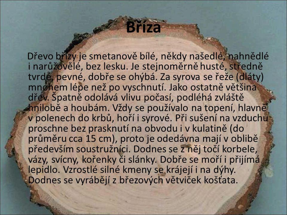 Bříza Dřevo břízy je smetanově bílé, někdy našedlé, nahnědlé i narůžovělé, bez lesku. Je stejnoměrně husté, středně tvrdé, pevné, dobře se ohýbá. Za s