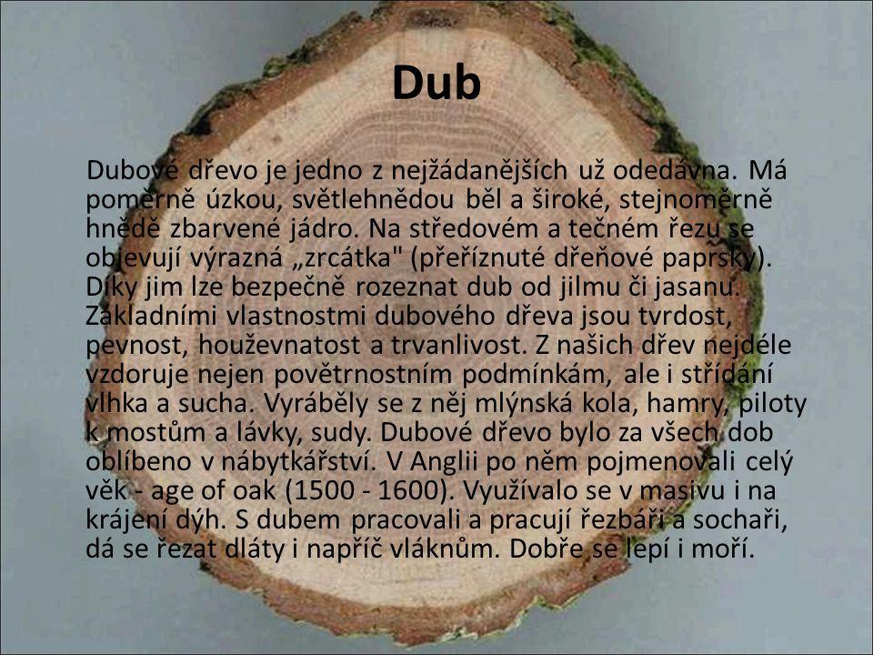Dub Dubové dřevo je jedno z nejžádanějších už odedávna. Má poměrně úzkou, světlehnědou běl a široké, stejnoměrně hnědě zbarvené jádro. Na středovém a