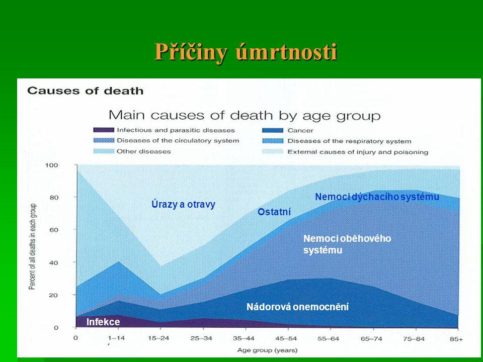 Příčiny úmrtnosti Nemoci oběhového systému Nemoci dýchacího systému Nádorová onemocnění Úrazy a otravy Infekce Ostatní
