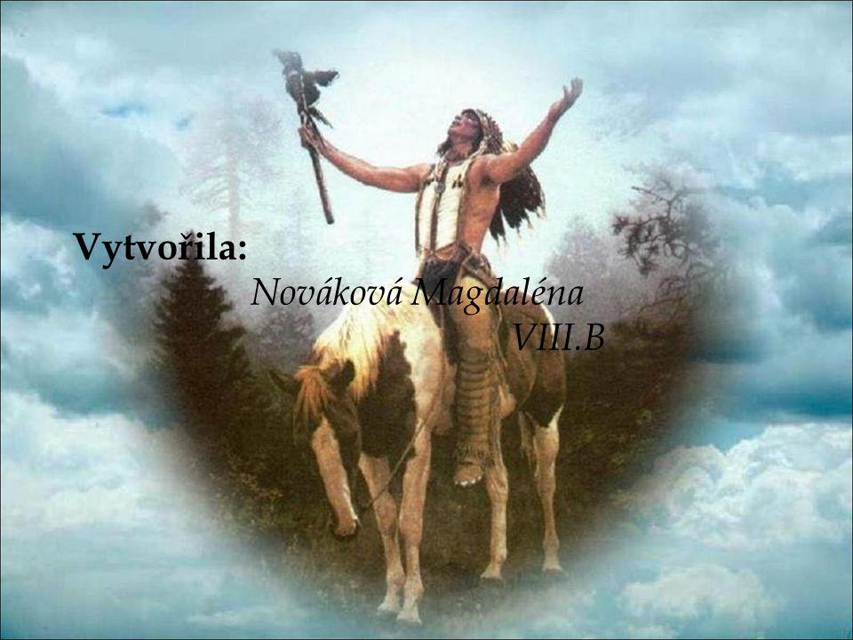 Vytvořila: Nováková Magdaléna VIII.B