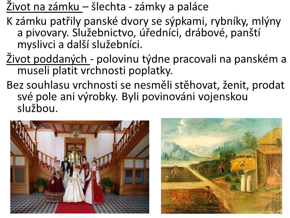 Život na zámku – šlechta - zámky a paláce K zámku patřily panské dvory se sýpkami, rybníky, mlýny a pivovary. Služebnictvo, úředníci, drábové, panští