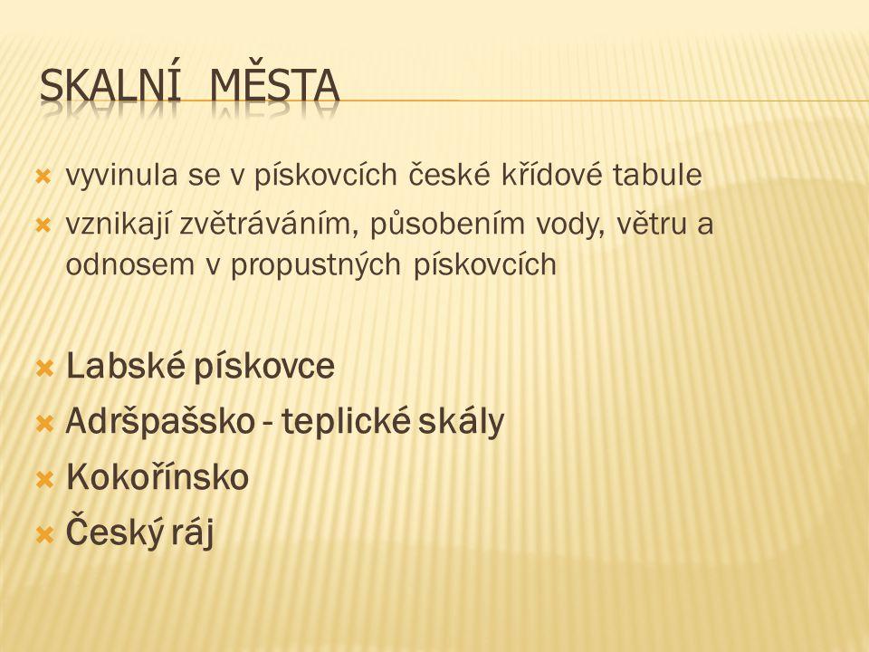  vyvinula se v pískovcích české křídové tabule  vznikají zvětráváním, působením vody, větru a odnosem v propustných pískovcích  Labské pískovce  A