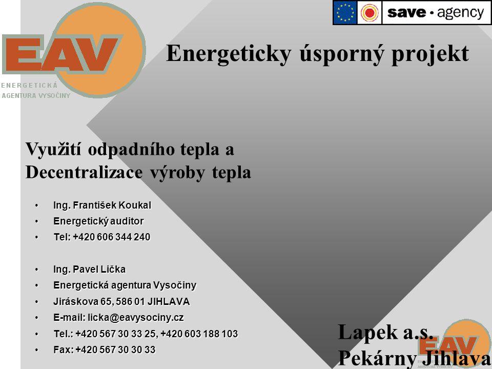 ÚSPORY ENERGIE Jednotný evropský trh energií Sblížení cen energií Vysoká energetická náročnost výroby v ČR Zhoršení konkurenceschopnosti českých výrobců + Současná investice do úsporných opatření = Snížení nákladů na energie = VÝHODNÁ INVESTICE DO BUDOUCNOSTI