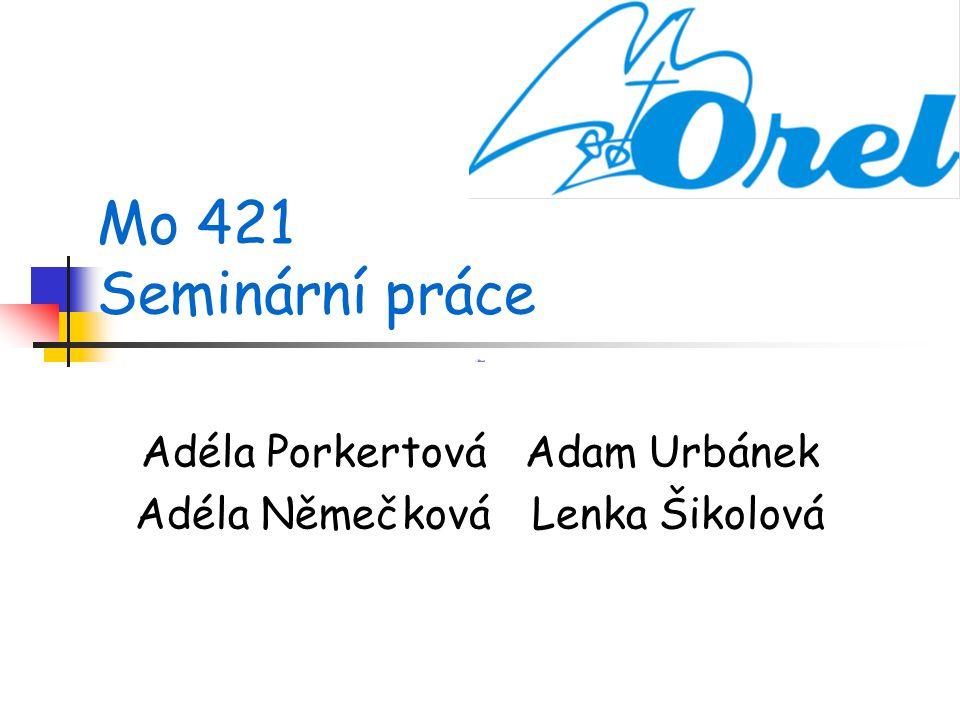 Mo 421 Seminární práce Adéla Porkertová Adam Urbánek Adéla Němečková Lenka Šikolová