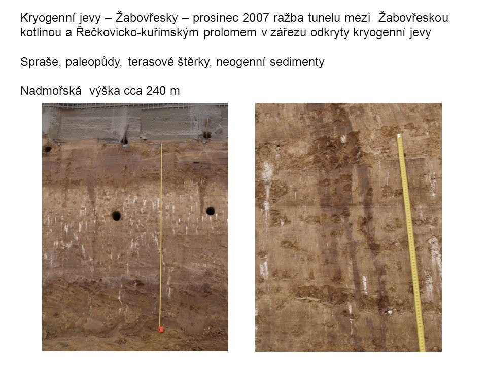 Kryogenní jevy – Žabovřesky – prosinec 2007 ražba tunelu mezi Žabovřeskou kotlinou a Řečkovicko-kuřimským prolomem v zářezu odkryty kryogenní jevy Spr