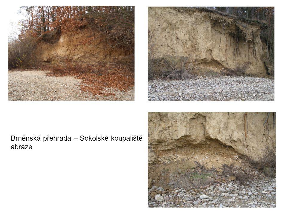 Brněnská přehrada – Sokolské koupaliště abraze
