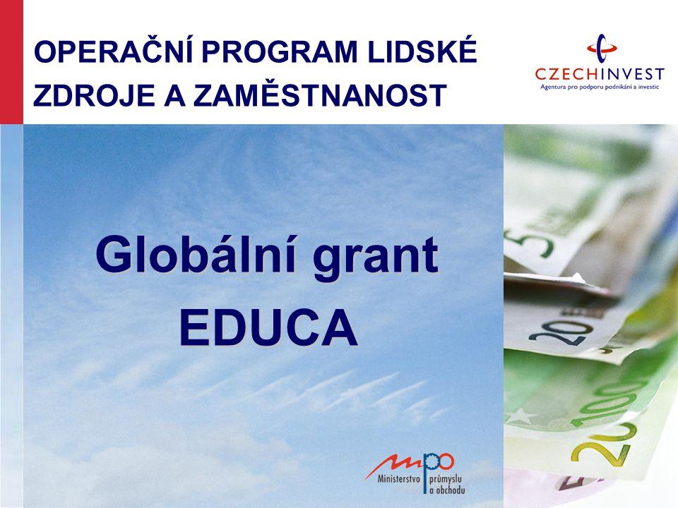 OPERAČNÍ PROGRAM LIDSKÉ ZDROJE A ZAMĚSTNANOST Globální grant EDUCA