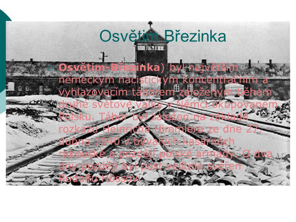 Osvětim Březinka  Osvětim-Březinka) byl největším německým nacistickým koncentračním a vyhlazovacím táborem založeným během druhé světové války v Němci okupovaném Polsku.