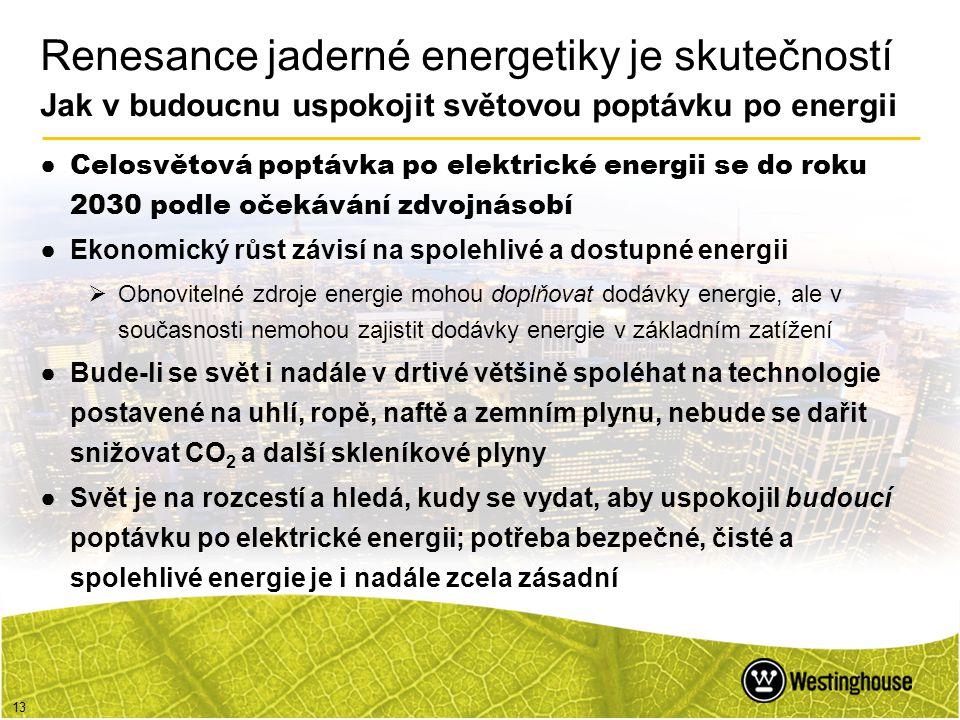 13 Renesance jaderné energetiky je skutečností Jak v budoucnu uspokojit světovou poptávku po energii ● Celosvětová poptávka po elektrické energii se d