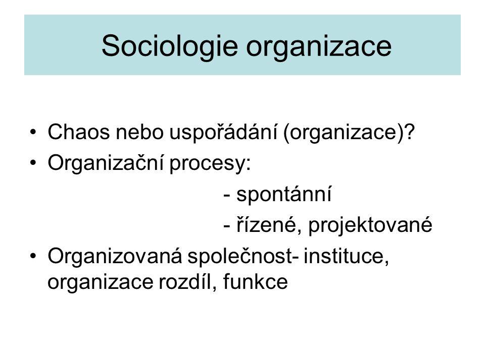 Sociologie organizace •Chaos nebo uspořádání (organizace)? •Organizační procesy: - spontánní - řízené, projektované •Organizovaná společnost- instituc