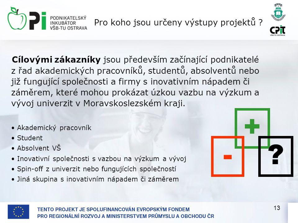 13 Pro koho jsou určeny výstupy projektů .