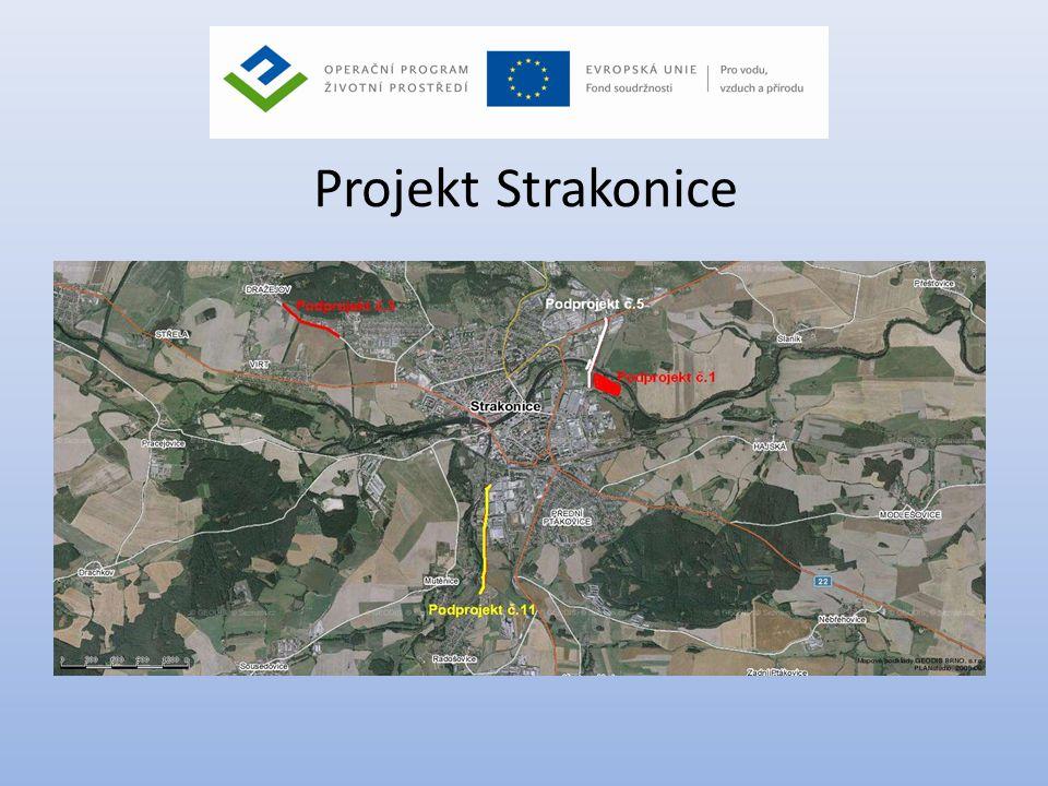 Podprojekt č.1 – Intenzifikace ČOV • Zajištění plnění požadavků na likvidaci odpadních vod v souladu s vodním zákonem (č.254/2001 Sb.) v platném znění a jeho prováděcími předpisy a v souladu se směrnicemi EU a to rozšířením a intenzifikací stávající ČOV na kapacitu 75 000 EO: • Výstavba nové technologické linky čištění odpadních vod • Rekonstrukce a doplnění příslušných zařízení stávající ČOV