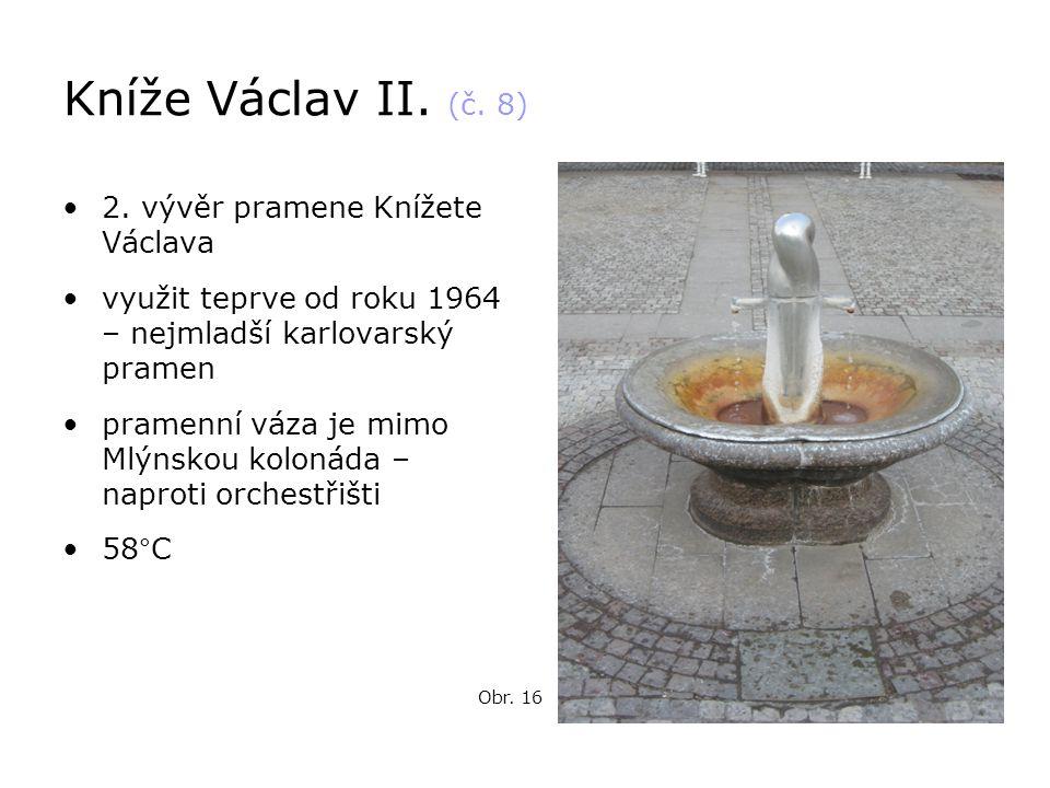 Kníže Václav II. (č. 8) •2. vývěr pramene Knížete Václava •využit teprve od roku 1964 – nejmladší karlovarský pramen •pramenní váza je mimo Mlýnskou k