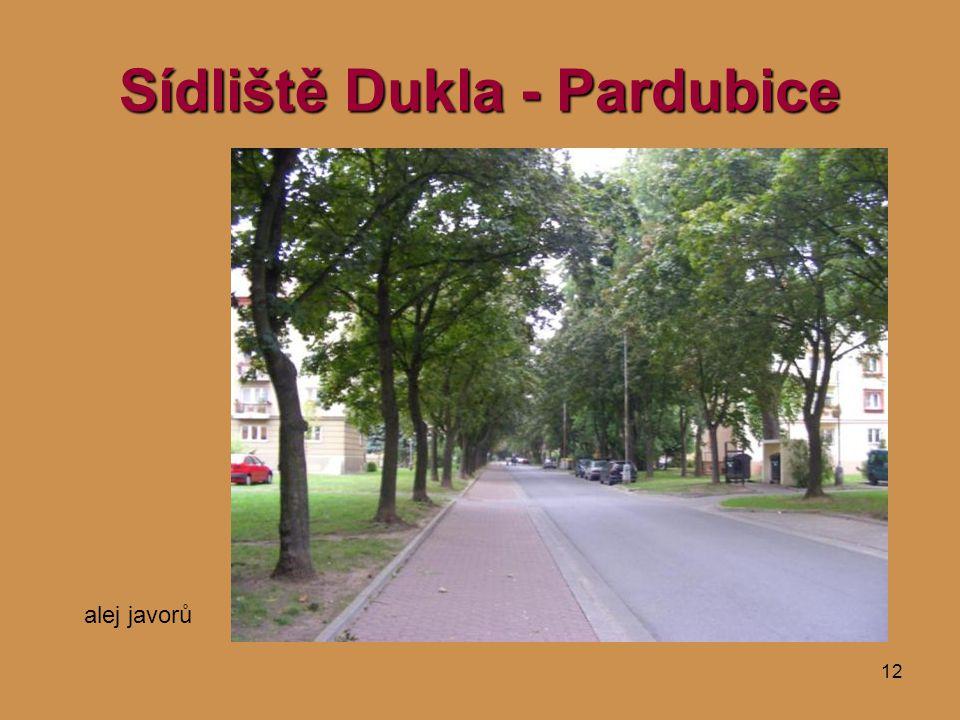 12 Sídliště Dukla - Pardubice alej javorů