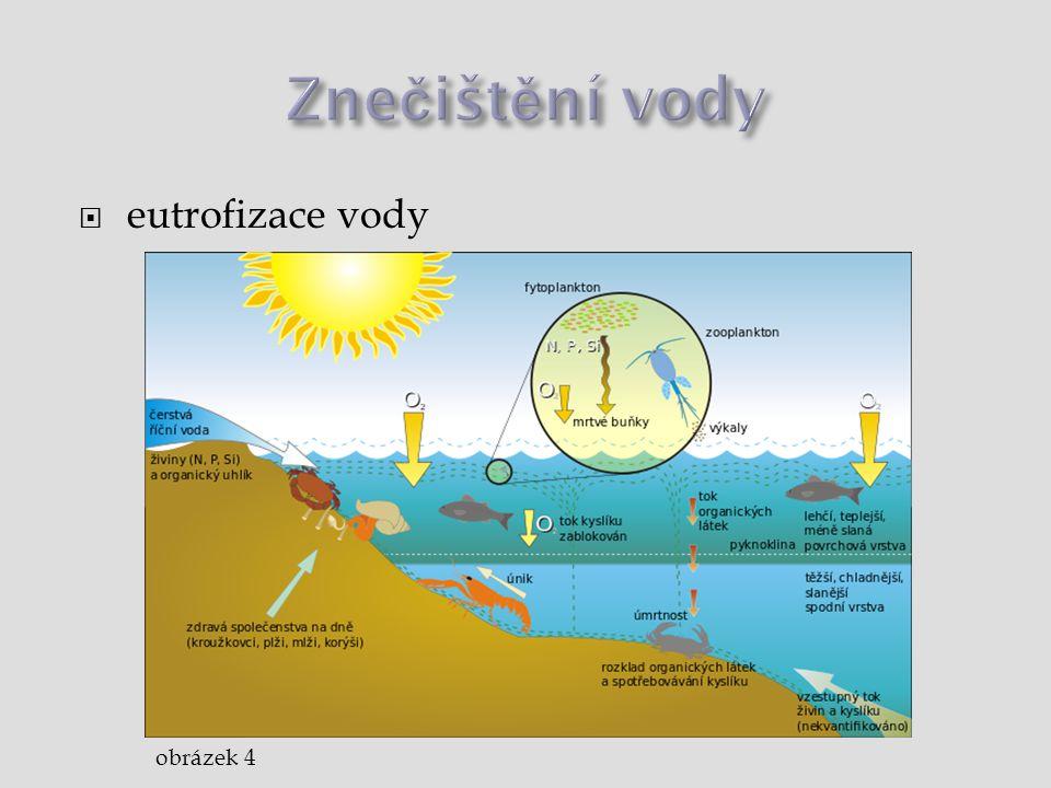  eutrofizace vody obrázek 4