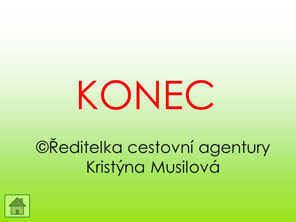 ©Ředitelka cestovní agentury Kristýna Musilová KONEC