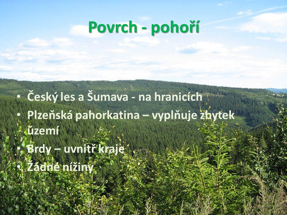 Povrch - pohoří • Český les a Šumava - na hranicích • Plzeňská pahorkatina – vyplňuje zbytek území • Brdy – uvnitř kraje • Žádné nížiny