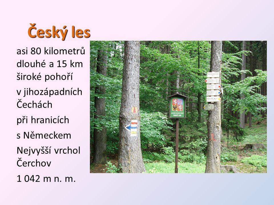 Český les asi 80 kilometrů dlouhé a 15 km široké pohoří v jihozápadních Čechách při hranicích s Německem Nejvyšší vrchol Čerchov 1 042 m n. m.