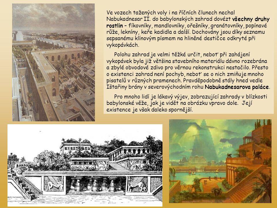 Ve vozech tažených voly i na říčních člunech nechal Nabukadnesar II. do babylonských zahrad dovézt všechny druhy rostlin – fíkovníky, mandlovníky, oře
