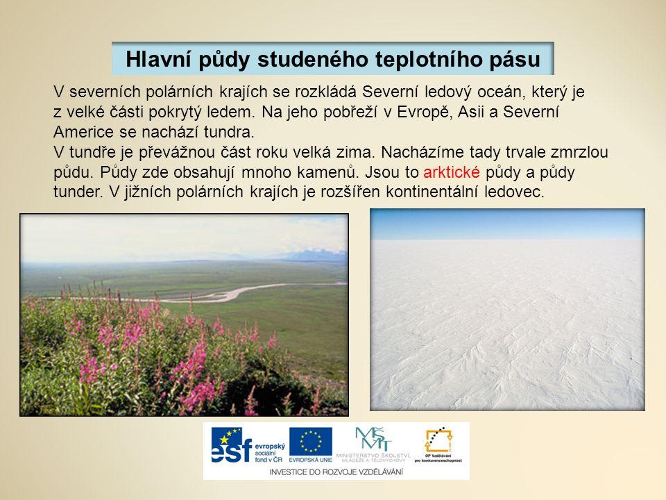 Hlavní půdy studeného teplotního pásu V severních polárních krajích se rozkládá Severní ledový oceán, který je z velké části pokrytý ledem.