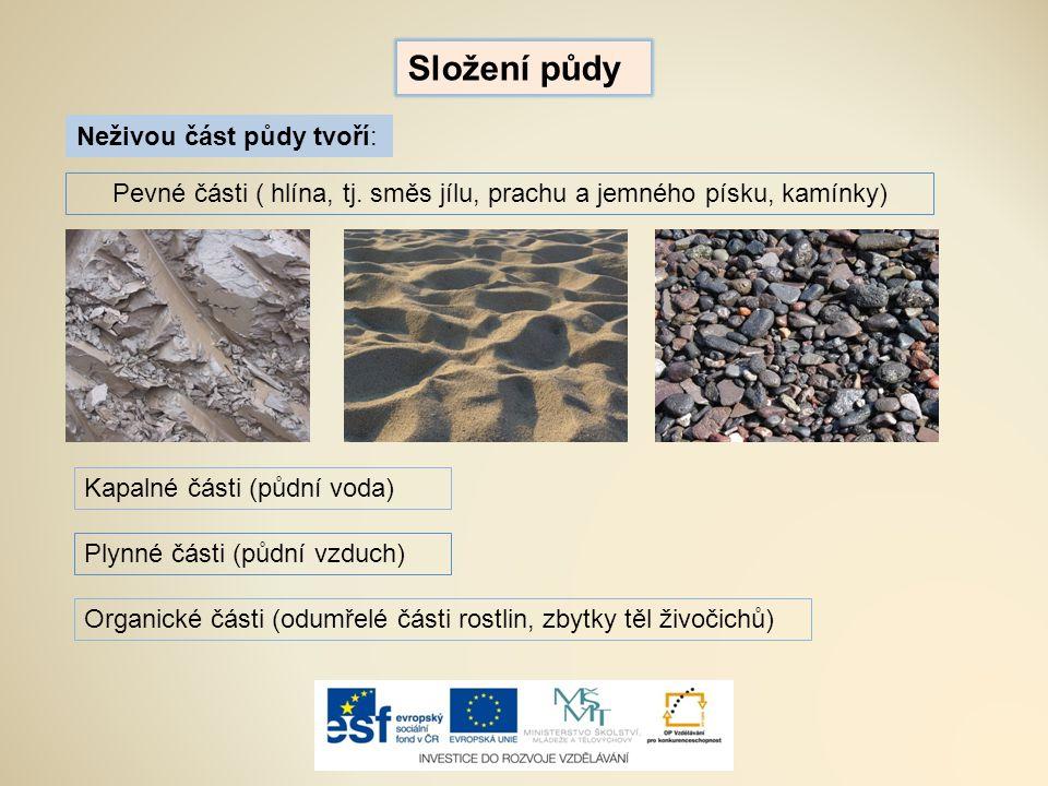 Složení půdy Neživou část půdy tvoří: Pevné části ( hlína, tj. směs jílu, prachu a jemného písku, kamínky) Kapalné části (půdní voda) Plynné části (pů
