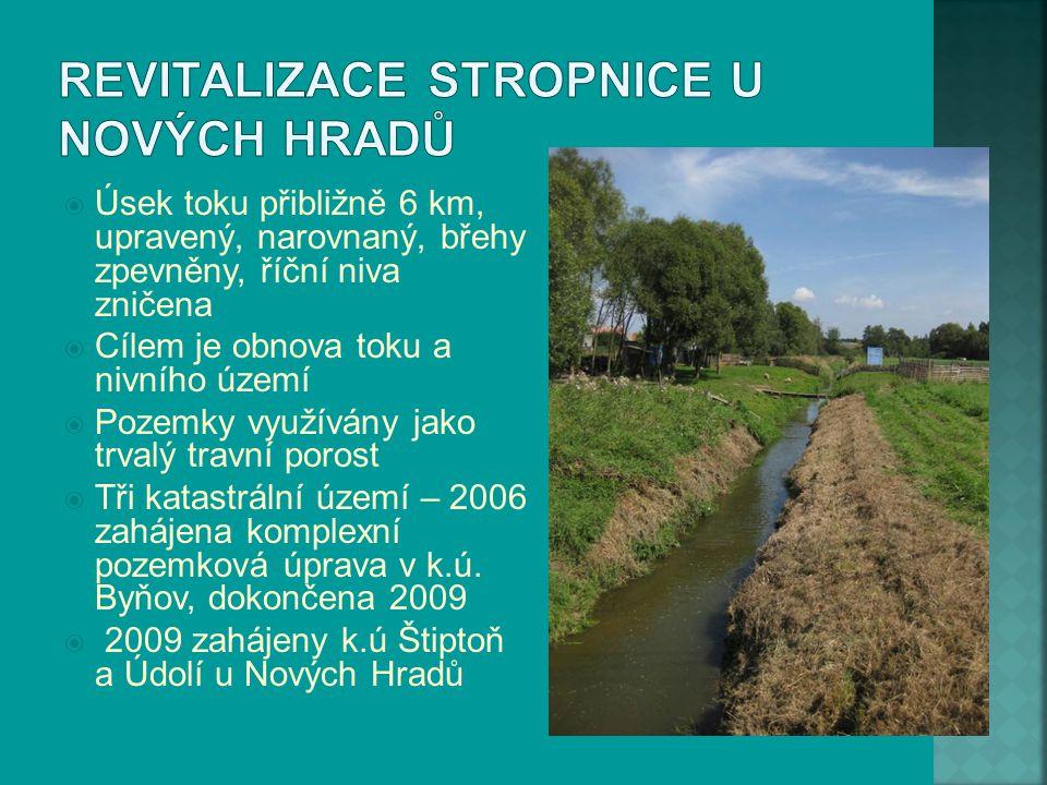  Úsek toku přibližně 6 km, upravený, narovnaný, břehy zpevněny, říční niva zničena  Cílem je obnova toku a nivního území  Pozemky využívány jako tr