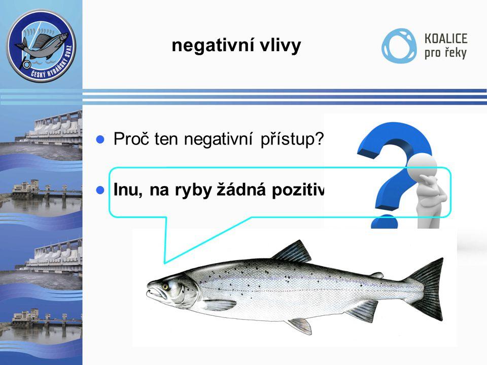 negativní vlivy  Proč ten negativní přístup?  Inu, na ryby žádná pozitiva nezbyla…