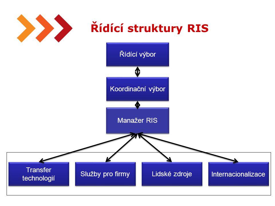 30 Řídící struktury RIS Řídící výbor Koordinační výbor Internacionalizace Lidské zdroje Služby pro firmy Transfer technologií Manažer RIS